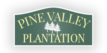 Pine Valley Plantation Mobile Home Park